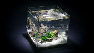 Полировка стекол аквариума